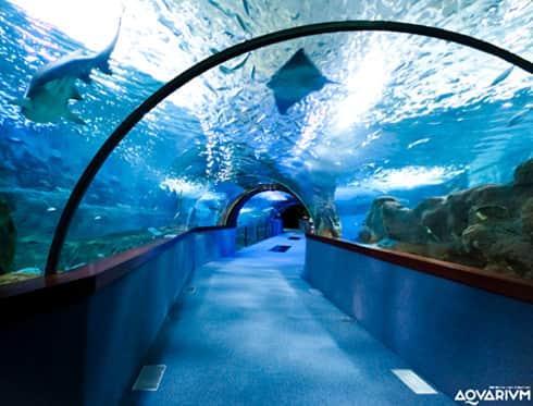 Featured monuments san sebastian city tour - Aquarium donosti precio ...
