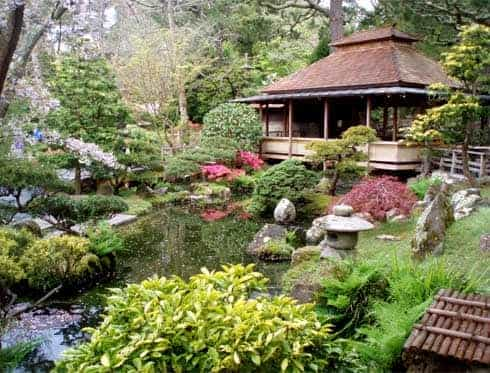 Visit Japanese Tea Garden | San Francisco City Tour