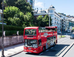 City Tour buses